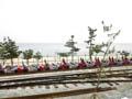 해변가의 옛철도를 레일바이크로 활용
